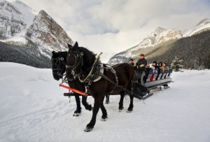 Horse_Sleigh_Ride_Lake_Louise_Paul_Zizka_2_Horizontal