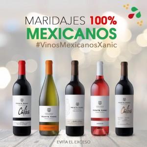 vinos Monte Xanic